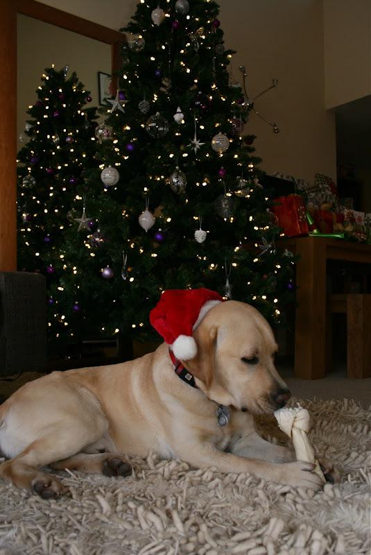 Christmas Cooper Dec 09