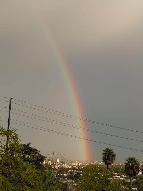 Rainbow West Hollywood Dec10