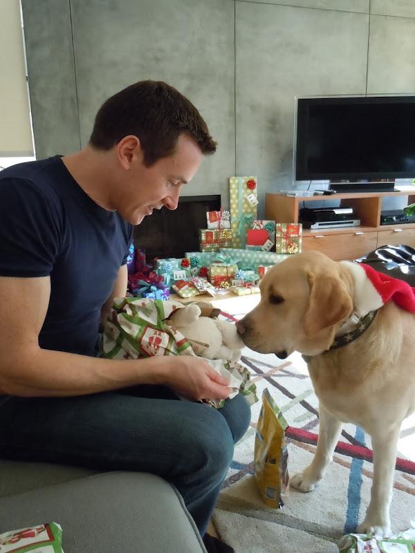 Puppy presents
