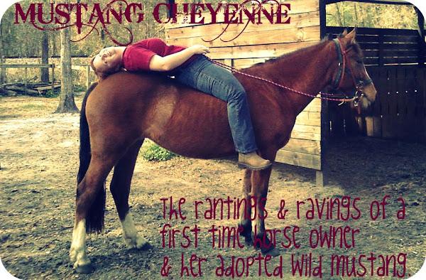Mustang Cheyenne