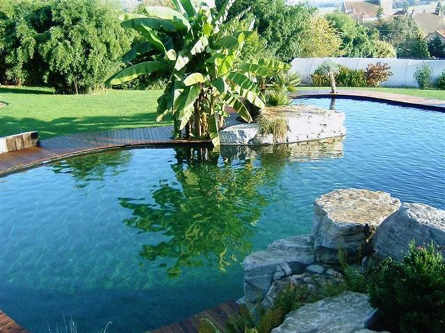 Serez vous pr t changer vos habitudes pour sauver la for Chauffer piscine naturelle