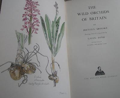 Botany scholarly paper