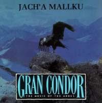 Gran Cóndor