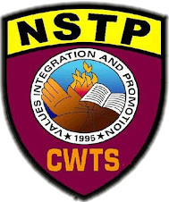 nstp cwts The study aimed to assess the extent of nstp-cwts implementation, the level of student development in davao doctors college and determine the relationship between them as basis for the improvement of the nstp-cwts curriculum in the educational program quantitative and qualitative methods of research were.