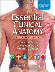 clinically oriented anatomy 4th edition pdf