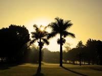 Golf dubaï