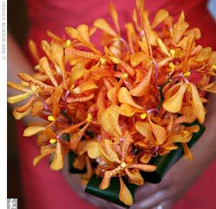 Indian Bridals Wedding Planning And Ideas Red Orange