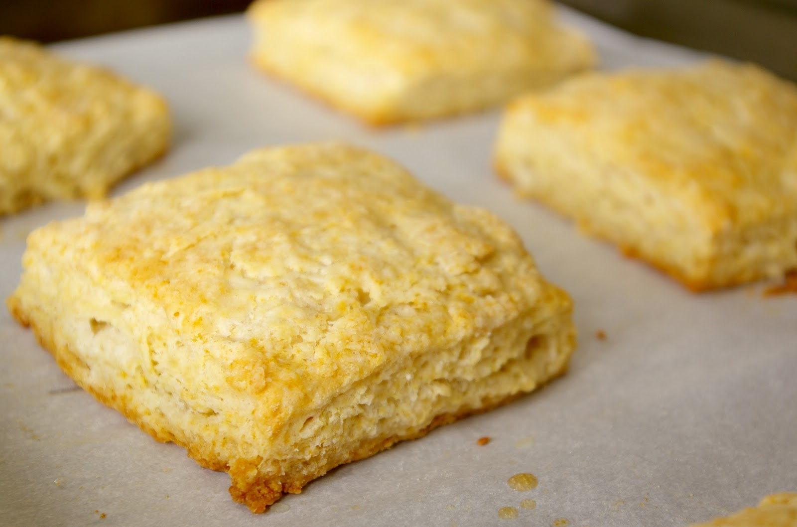 buttermilk biscuits adapted from professional baking by wayne gisslen ...