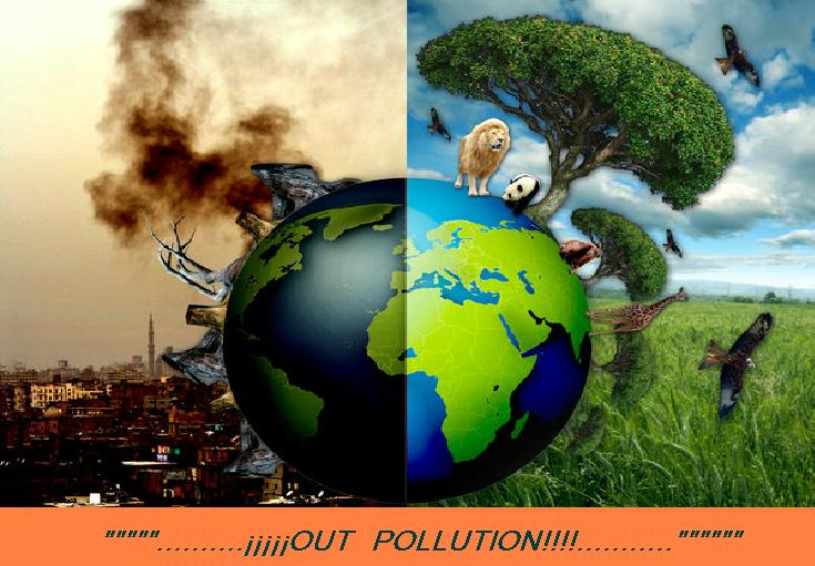 OuT!! PoLLUtIon!!: Environmental Shopping, Reduce Pollution ...