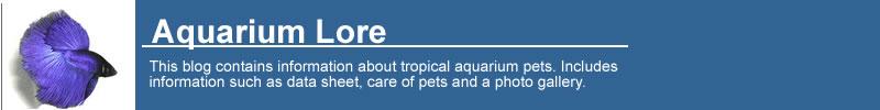 Aquarium Lore