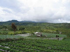 Agrowisata Rejang Lebong