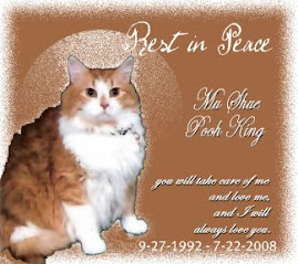 Rest in peace sweet boy
