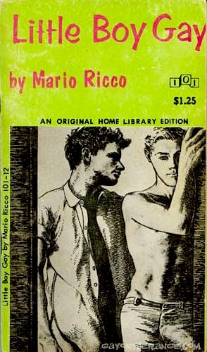 gay teen novels sandoval