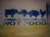 Mi Stencil