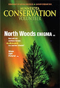 How Will Northern MN Forests Respond to a Warmer Climate?
