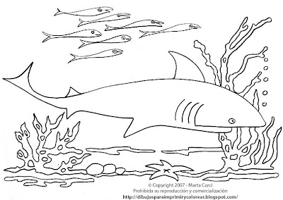 Animales marinos Dibujos infantiles para colorear Delfines - imagenes de animales marinos para colorear