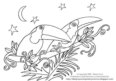 Jungle animals drawings for printing and coloring: Toucans ...