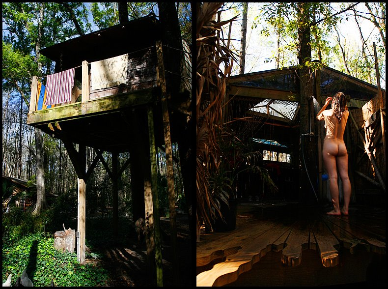 Lovely Treehouse Hostel Georgia Part - 13: The Hostel In The Forest