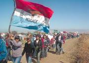 movimiento nacional campesino e indígena