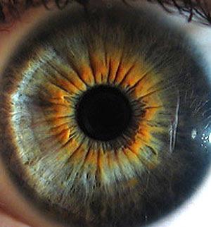 Las 2 unicas formas de cambiar el color de ojos