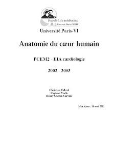 Anatomie du coeur Anatomi+du+coeur