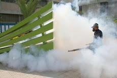 Mosquitos a correr DILE NO AL DENGUE, Operativo de Fumigación espacios abiertos UNE. viernes 23