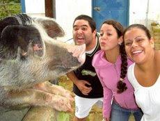 """Foro en la UNE """"Mitos y realidades del virus de la Influenza Porcina"""""""