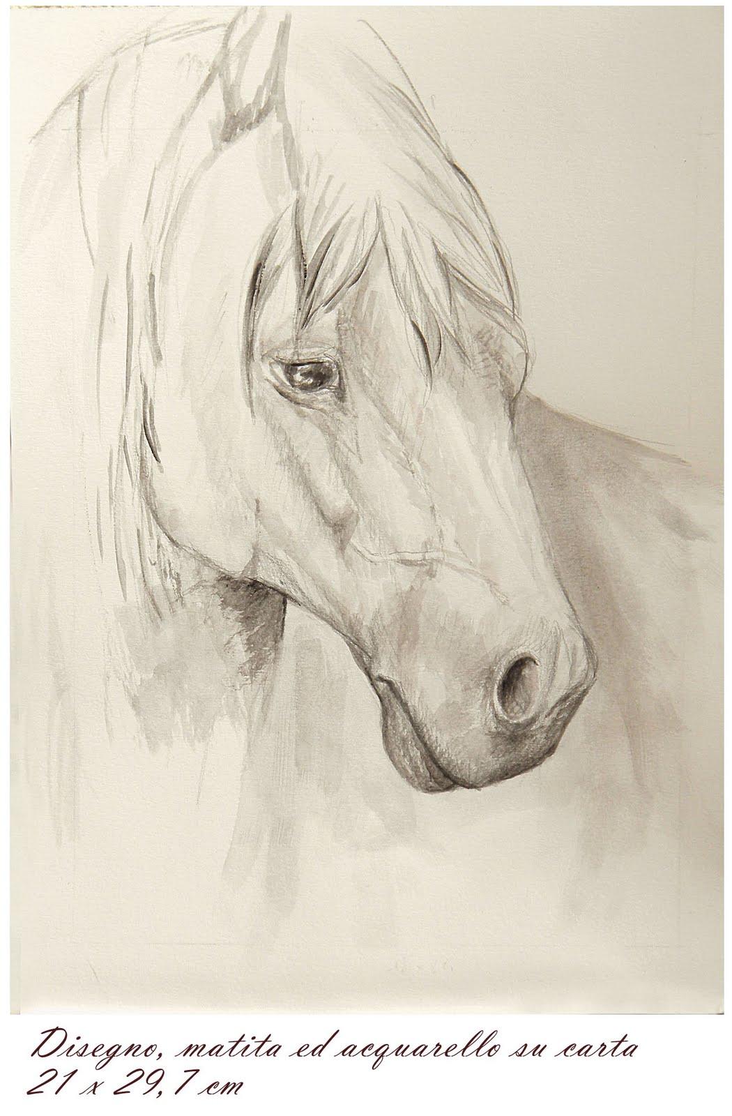 Dipinti disegni copie e rivisitazioni matita ed for Cavallo disegno a matita