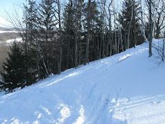 Fox Hill Ski Area
