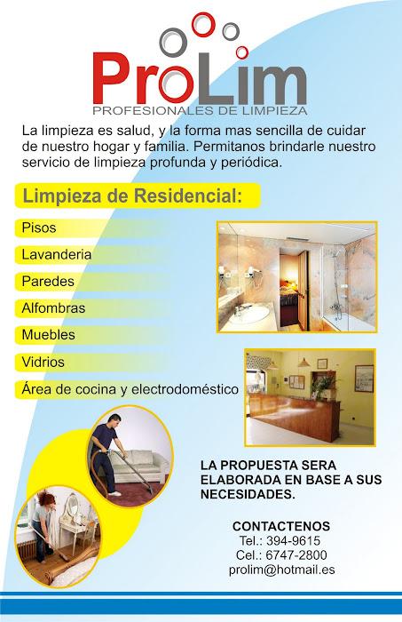 Prolim organizar y planificar la limpieza en casa - Servicio de limpieza para casas ...