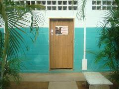 SEXTA  ACTIVIDAD de pinturas de puertas