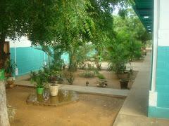 vista jardineras ornamentales