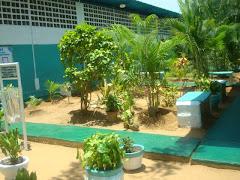 Areas verdes Lista