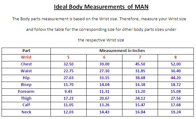 Apr 21,  · Tom Venuto looks at exactly what are the ideal body measurements for men and women. Chest Size = % of pelvis size; Waist size = 86% of pelvis size Good BMI. Are they average-good-or better? Upper body strength very good. Reply; reply; Posted Sat, 03/31/ - LIKE. ; Tadgh. Is the upper arm measurement meant to be taken Author: Tom Venuto.