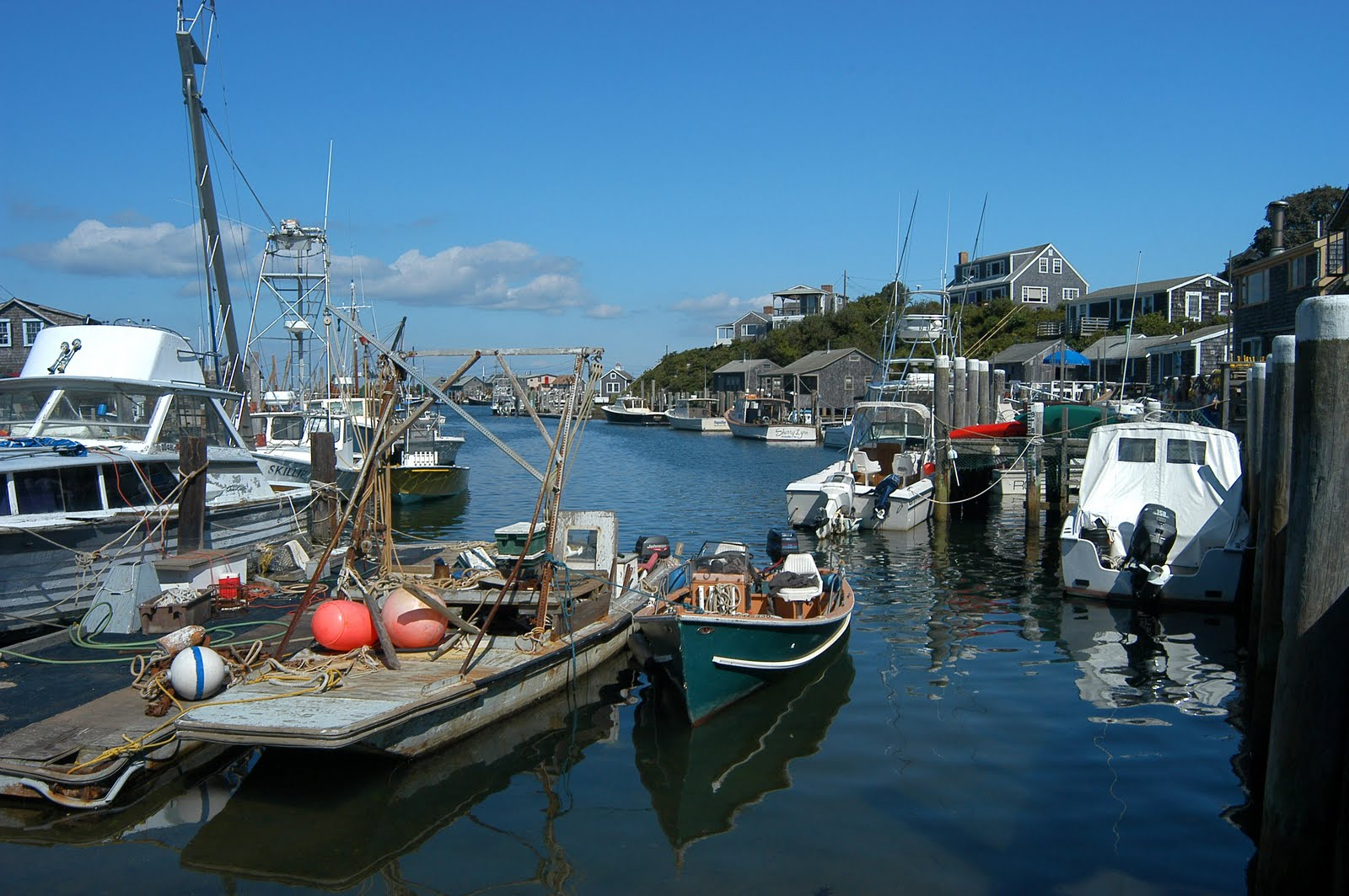 What i saw menemsha for New england fishing