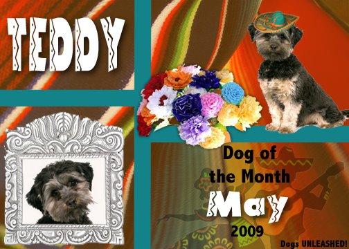 DOTM May 2009