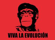 Venimos del mono y que!!!