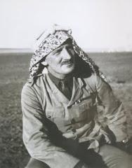 NEWCOMBE, ARABIA, 1917