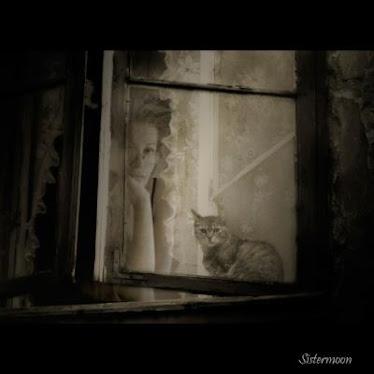 Domy patrzą oknami Fotografia Artystyczna
