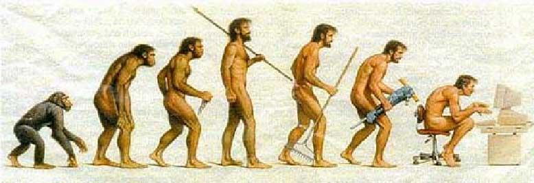 Desarrollo evolutivo del hombre