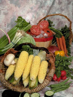 thanksgiving foods NAMC montessori activities
