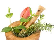 Medicina Herbolaria