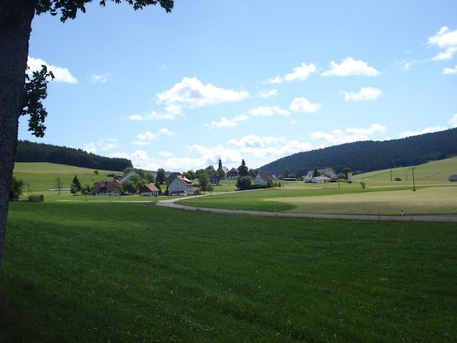 Blick auf Eisenbach-Schollach