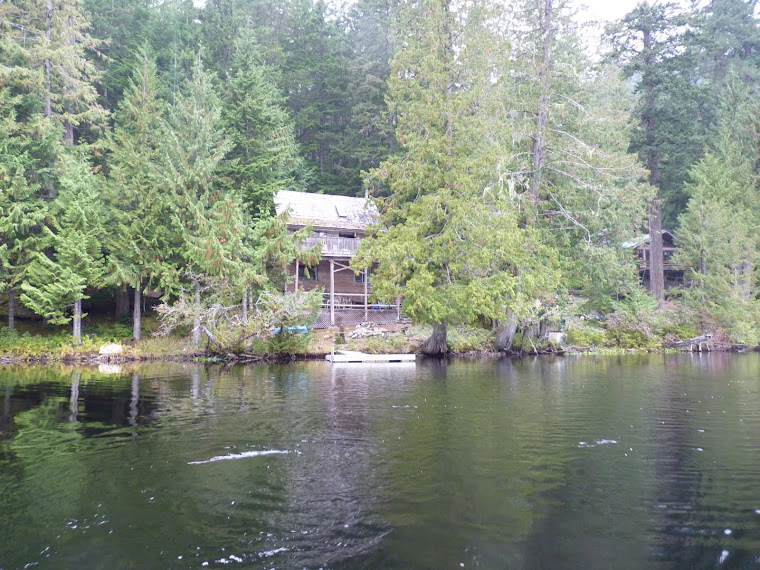 Butterfly lake property for sale affordable lakefront for Inexpensive lakefront property