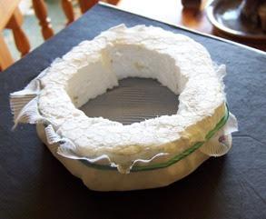 Ninho artificial de Bettas  Ninho1