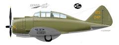P-35A Replica