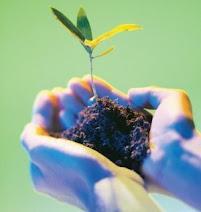 Plantemos vida...