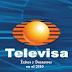 Aciertos y Desaciertos de Televisa en el 2010