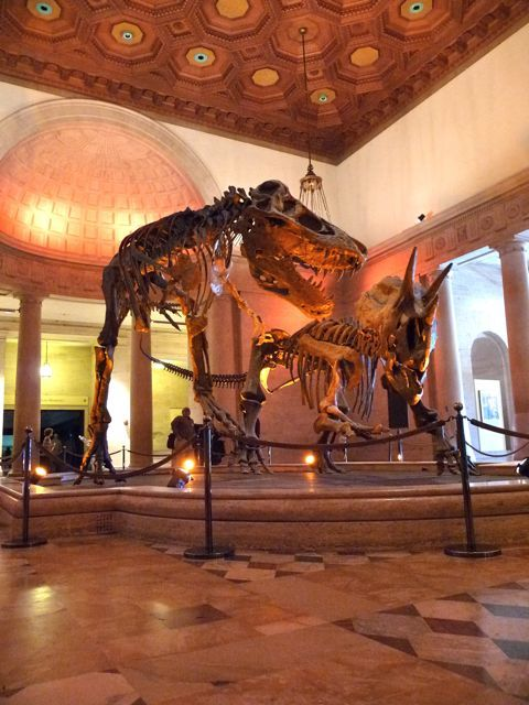 Los Angeles Natural History Museum Free Tuesday