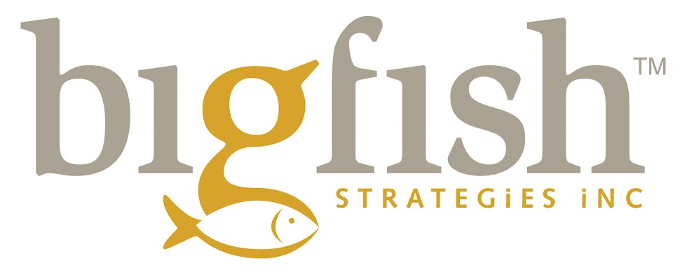 Bigfish Strategies Inc.
